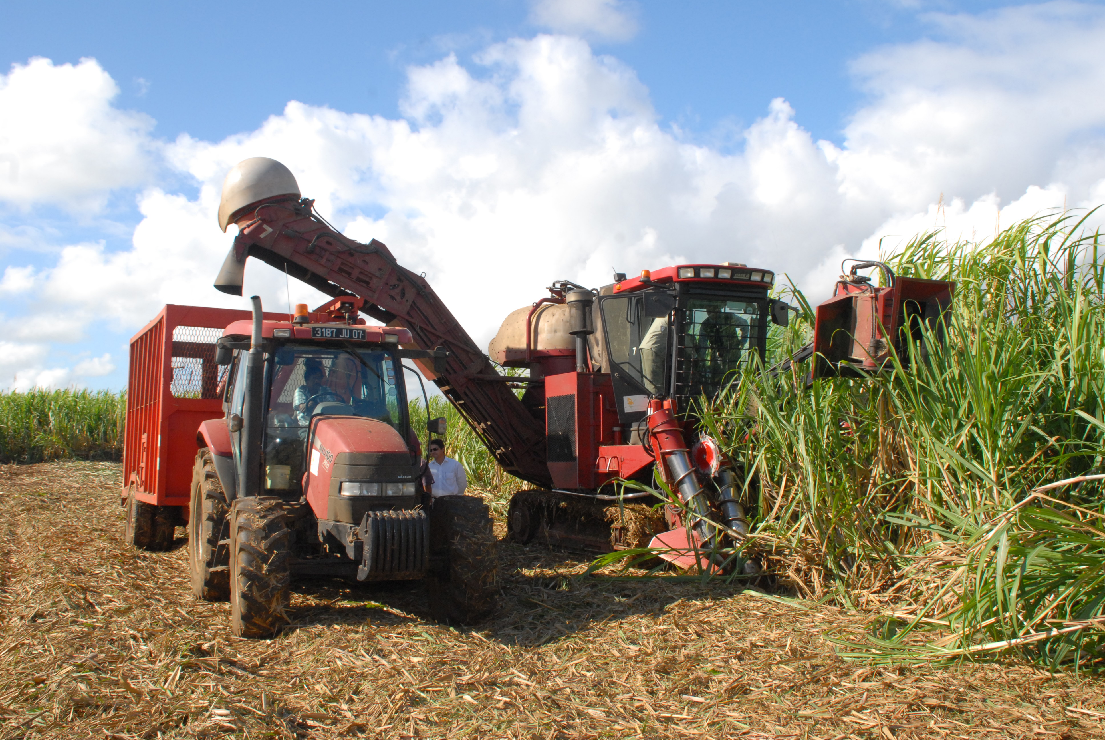 Government boosts support to the sugar cane industry