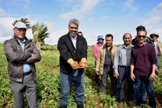 Minister Gobin launches first potato harvest in Glen Park
