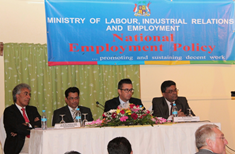Towards the finalisation of the National Employment Policy for Mauritius