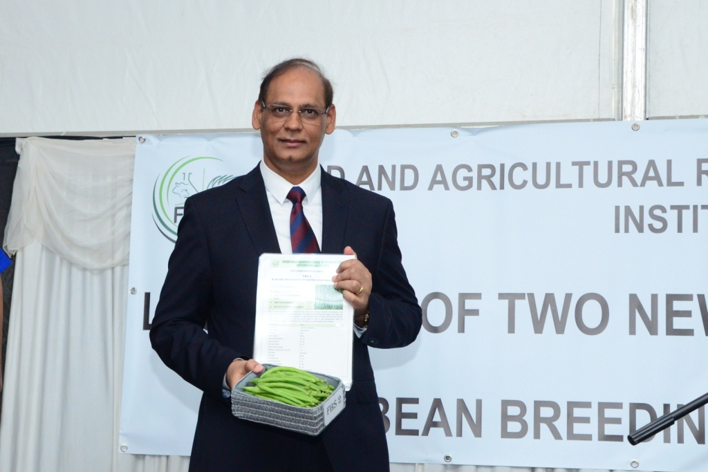 Agro Industry: FAREI launches two new varieties of Green Beans