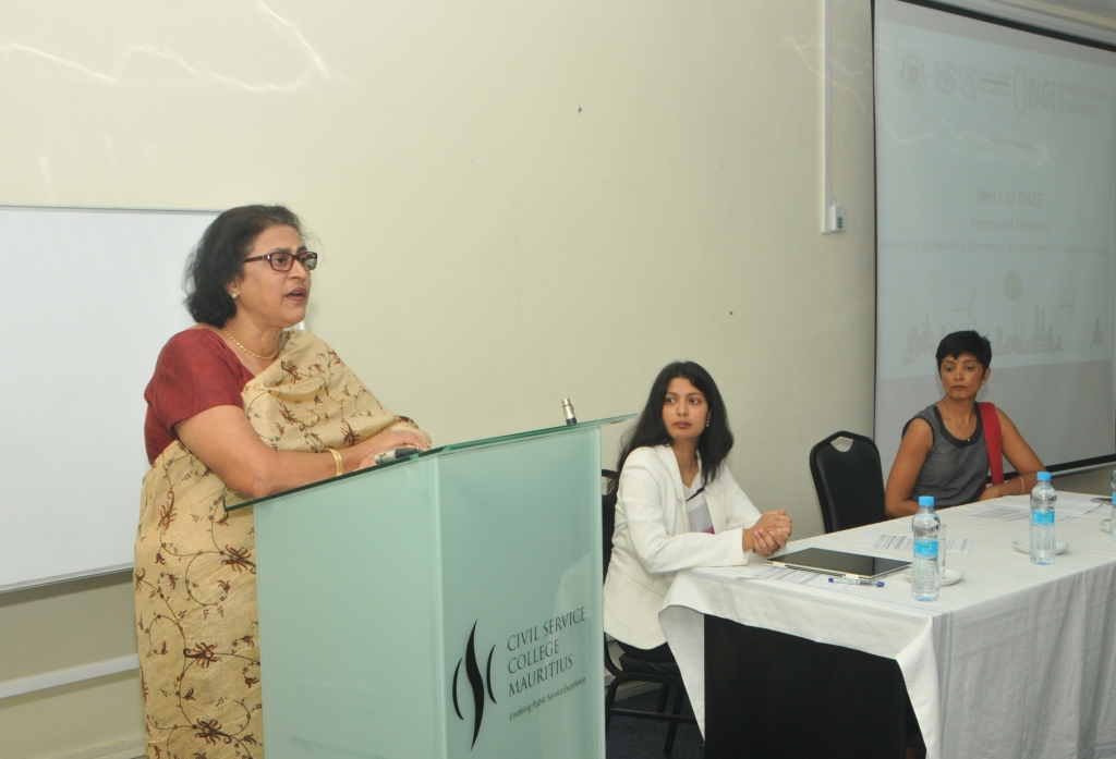 Workshop focuses on Promoting green industry in Mauritius