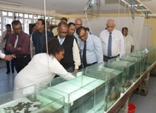 Ornamental Fish Farming project to diversify Mauritian fisheries sector