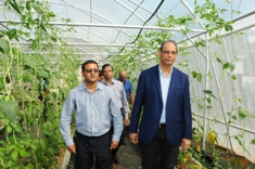 Model Organic Farm to promote safer and sustainable food production